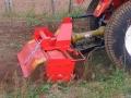 Hedge cutter 039 COPY 2