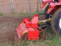 Hedge cutter 039